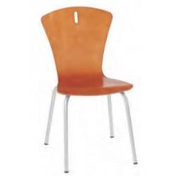Visuel de la chaise coque bois multiplis - Net Collectivités