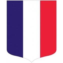 Écusson porte-drapeaux modèle Tricolore - Gamme éco - Net Collectivités