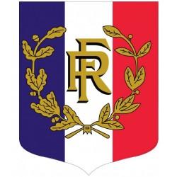 Écusson porte-drapeaux - Tricolore + RF et palmes - Gamme éco