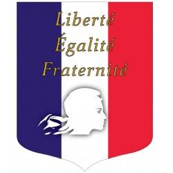 Visuel de l'écusson porte-drapeaux - Tricolore + Liberté Égalité Fraternité - Gamme éco - conforme Loi Peillon