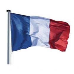 Achetez pavillon tricolore France - Net Collectivités