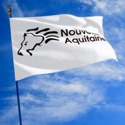 Le drapeau de la Région Nouvelle Aquitaine - Net Collectivités