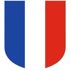 Visuel de l'Écusson porte-drapeaux - Tricolore - Gamme premium - châssis alu - Net Collectivités